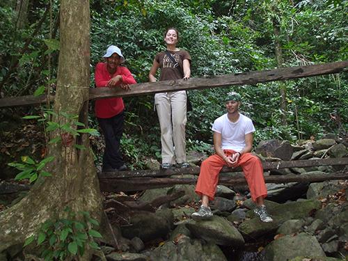 Trek through the Tropical Forest